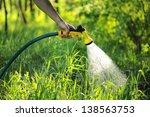 Gardener Watering The Lawn In...