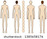body contours of male and... | Shutterstock .eps vector #1385658176