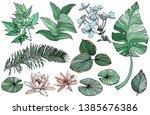 vector set green branches ... | Shutterstock .eps vector #1385676386