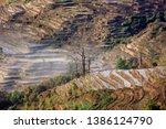samaba rice terrace fields in... | Shutterstock . vector #1386124790