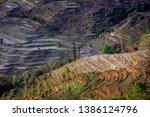 samaba rice terrace fields in... | Shutterstock . vector #1386124796