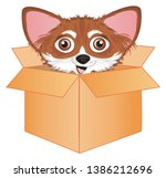 cute snout of chihuahua on...   Shutterstock . vector #1386212696