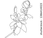 magnolia in a vector style... | Shutterstock .eps vector #1386414023
