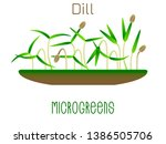 microgreens dill. sprouts in a... | Shutterstock .eps vector #1386505706