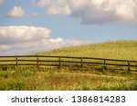 equine fence in partial... | Shutterstock . vector #1386814283