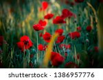colourful background  flowers...   Shutterstock . vector #1386957776