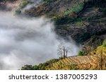 samaba rice terrace fields in... | Shutterstock . vector #1387005293
