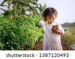 asian rural way urgency with... | Shutterstock . vector #1387120493