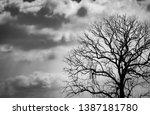 silhouette dead tree on dark... | Shutterstock . vector #1387181780