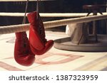 Boxing Gloves Are Hanging On A...