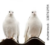 Two Doves On A Roof Isolated O...