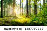 beautiful forest in spring with ... | Shutterstock . vector #1387797386