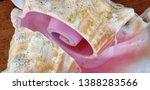 Sea Shell Cutaway Closeup Wher...