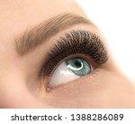 Beautiful Female Open Blue Eye...