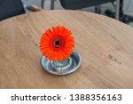 gerbera flower in ashtray  no... | Shutterstock . vector #1388356163