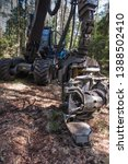 Small photo of forestry harvester during a stoppage among trees in the forest