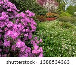 view of the colorful blooming... | Shutterstock . vector #1388534363