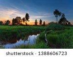 summer sunset around field with ... | Shutterstock . vector #1388606723