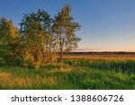 landscape with coloful sunset... | Shutterstock . vector #1388606726