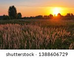 landscape with coloful sunset... | Shutterstock . vector #1388606729