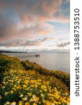 flowers and view of scripps... | Shutterstock . vector #1388753510