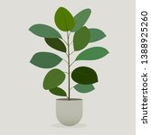 illustration of green plant in... | Shutterstock .eps vector #1388925260