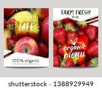 vector brochure design template ... | Shutterstock .eps vector #1388929949