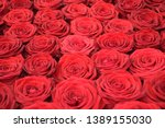 Stock photo a declaration of love through red roses 1389155030