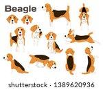 beagle illustration dog poses... | Shutterstock .eps vector #1389620936