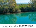 old broken tree branches fell... | Shutterstock . vector #1389759686