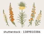 summer floral composition.... | Shutterstock .eps vector #1389810386