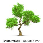 tree isolated with high... | Shutterstock . vector #1389814490