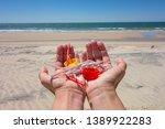 Hands Full Of Plastics On The...