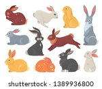 Stock vector vector set of cute rabbits in cartoon style bunny pet silhouette in different poses hare and 1389936800