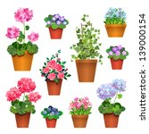 Flowers In Pots.  Vector...
