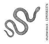 snake drawing illustration.... | Shutterstock .eps vector #1390582376