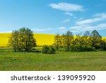 beautiful summer rural... | Shutterstock . vector #139095920