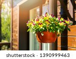 Pot With Colorful Pansy Flowers ...