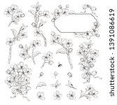 blooming tree. mega set...   Shutterstock .eps vector #1391086619