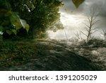 forest is bordered by desert ... | Shutterstock . vector #1391205029