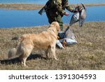Hunting With A Dog For Ducks....