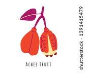 achee fruit flat vector... | Shutterstock .eps vector #1391415479