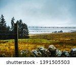 scotland   scottish hillside... | Shutterstock . vector #1391505503