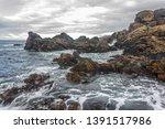 stony coast and wild sea ... | Shutterstock . vector #1391517986