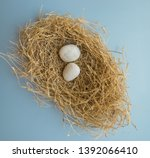 two white rock pebbles placed... | Shutterstock . vector #1392066410