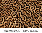 Jaguar  Leopard And Ocelot Skin ...
