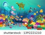 marine life landscape   the...