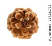 Pine Cone Top View Isolated On...