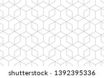 the geometric pattern with... | Shutterstock .eps vector #1392395336