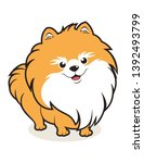Simple Cute Pomeranian Dog...